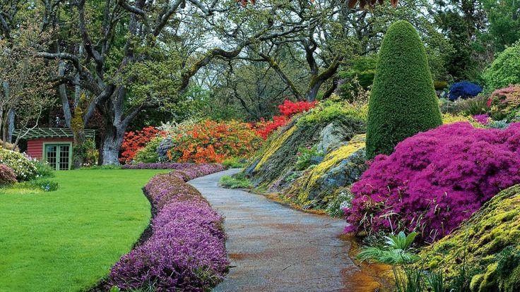 En mars: que faire dans son jardin ?