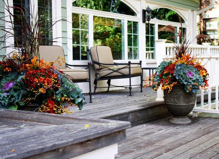Flores Del Sol: Autumn Flower Planting Choices