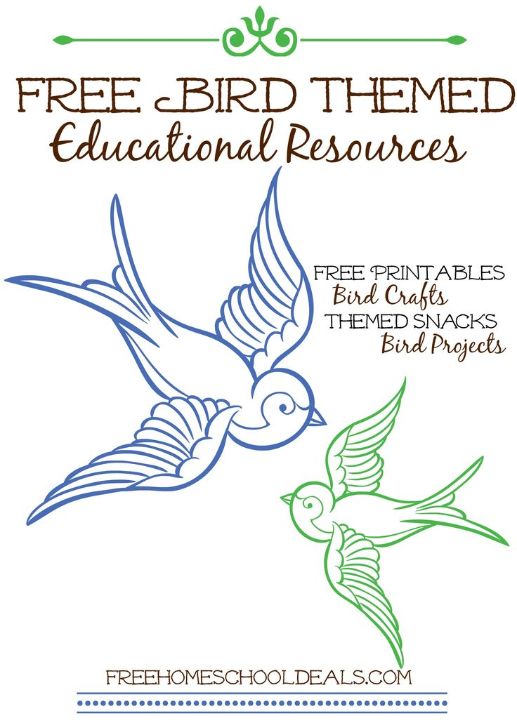 Free Bird Themed Educational Resources - AMAZING list for homeschoolers!!