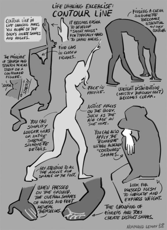 """Life Drawing Exercise: Contour Line"" 