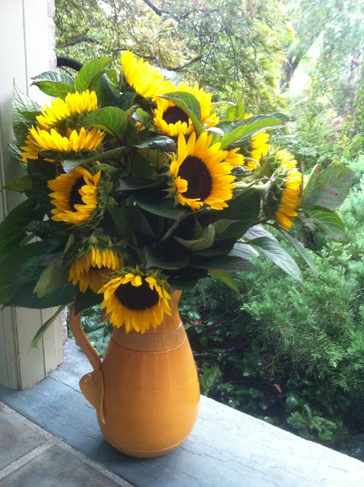 Sunflower arrangement in a pitcher vase flower