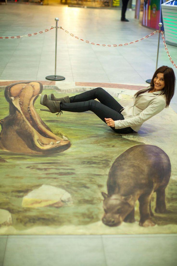 Zobacz hipopotamy w Sky Tower  zapraszamy na Wystawę 3D.   Odszukaj wszystkie ekspozycje i zrób niesamowite foty
