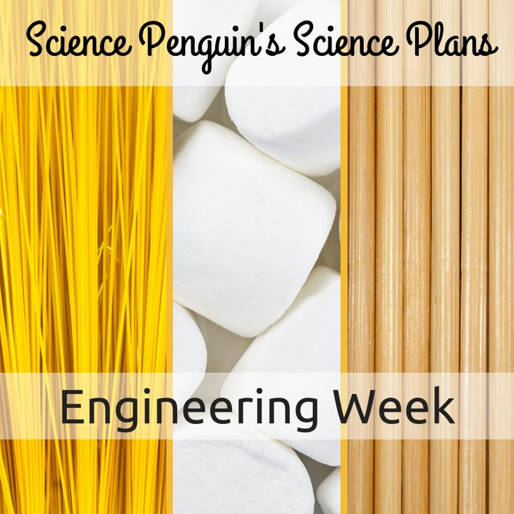Science Penguin's Science Plans {Week 31} popsicles parachutes, spaghetti, and marshmallows for engineers? You bet!: The Science Penguin