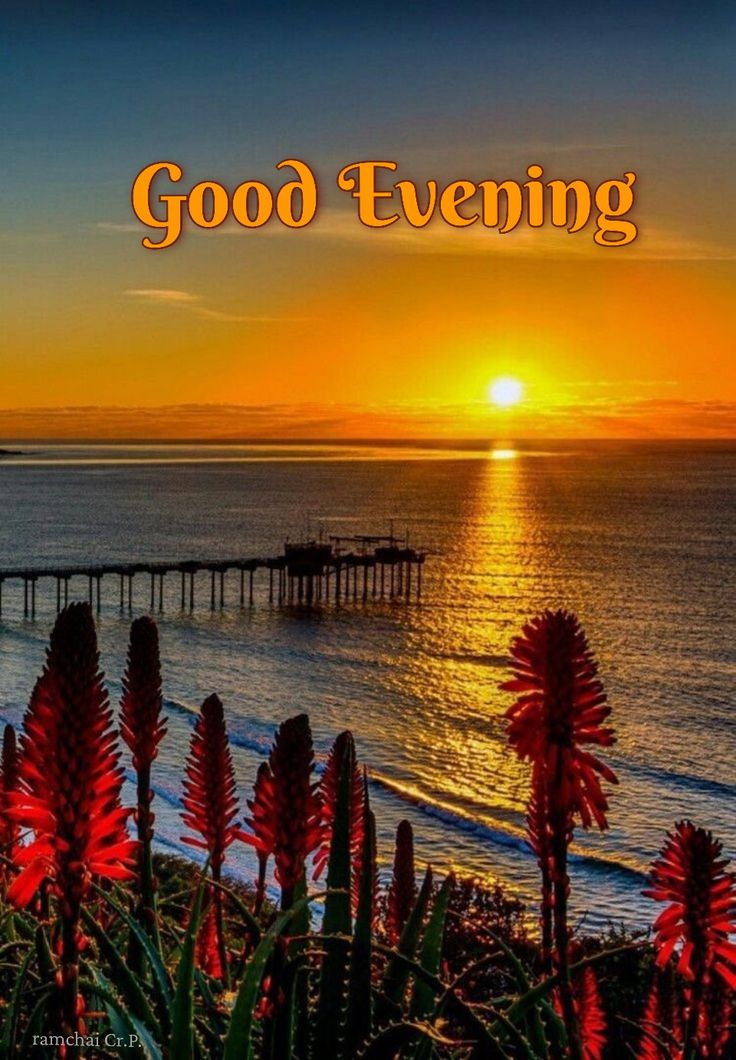 Pin by ABRAHAM SELVAMONY on Good Evening in 2020 Good