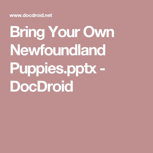 Bring Your Own Newfoundland Puppies.pptx - DocDroid