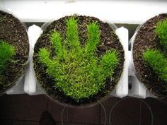 "Homegrown Grass Handprint - would be fab for Mother's Day ("",)"