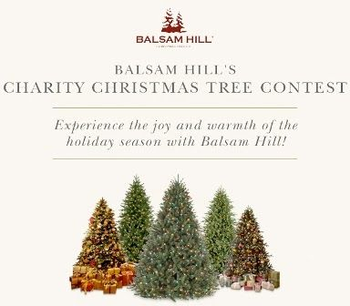 Balsam hill charity and christmas trees on pinterest