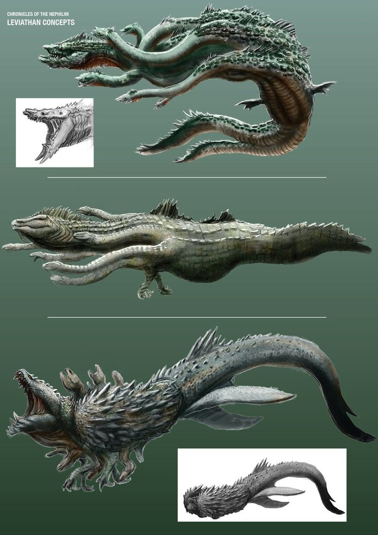 CotN: Leviathan Concept Sketches by *LDN-RDNT on deviantART Cool concepts of the leviathan, I like the last the most
