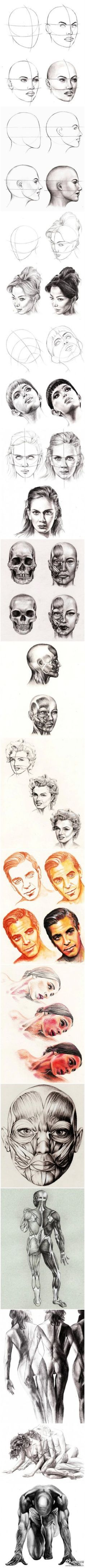 Pencil Portrait Mastery - Comment dessiner un visage - Discover The Secrets Of Drawing Realistic Pencil Portraits