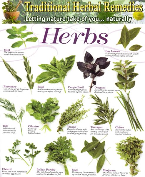 List Medicinal Plants | Herbal/Medicinal Plants