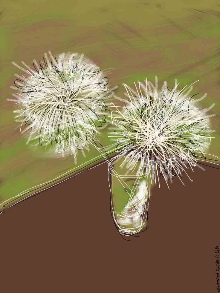 Motherhood: feeling unproductive? * * *Time disappears when you're with a newborn baby. But wait…http://illustratedguidetolife.com/2014/06/23/motherhood-feeling-unproductive/ Illustration drawing ipad painting dandelions in a vase