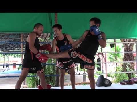 Tiger Muay Thai techniques: Front kick respond low kick