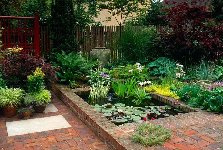 Small garden with low maintenance planting and a water for Small garden pond care
