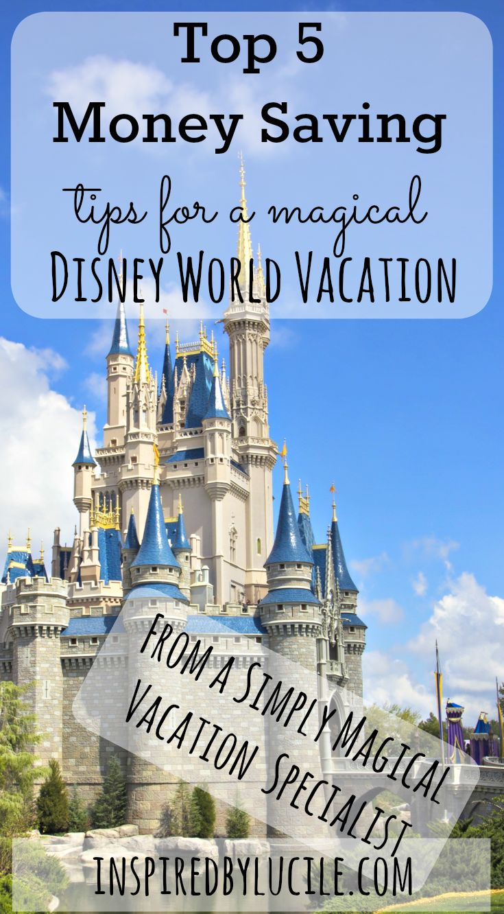 Top 5 Money Saving Dips for a Magical Disney World Vacation