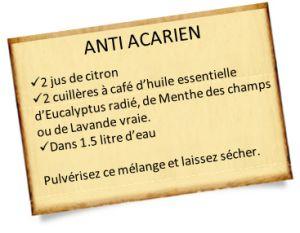 Remèdes Anti acariens naturel à préparer chez soi