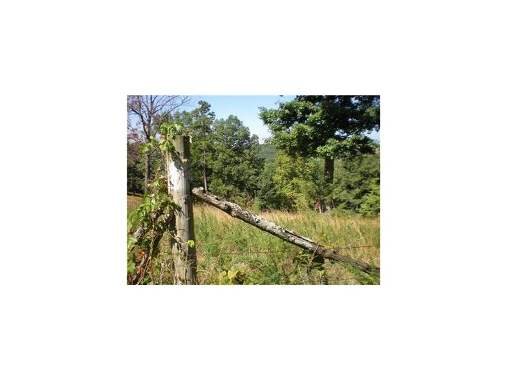 Country living in Eureka Springs! See more vacant land for sale with 5 to 10 acres! http://www.tnecessary.remaxarkansas.com/garfield-ar-land-for-sale-10-to-25-acres.aspx?ptd=1&sortbyid=0