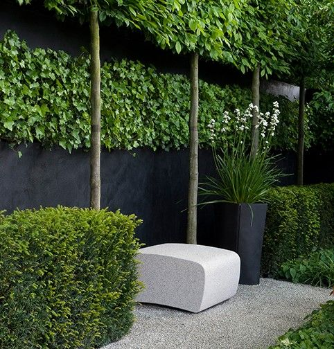 I know this is a product ad for a stone bench but it's the landscaping I'm drawn to with the hedging including the hedge in the air with the trees along with the black wall