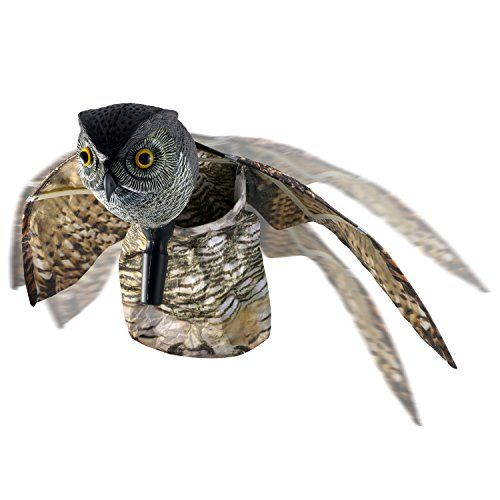 Bird Repellent Disks- An Attractive, Wildlife-Friendly Solution To Your Pest Problem. Robust and Reliable: Secure Your Property From Damage and Mess: Ward off Woodpeckers, Pigeons, Grackles and More.