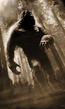 Bigfoot/sasquatch giant humanoid ape like creature