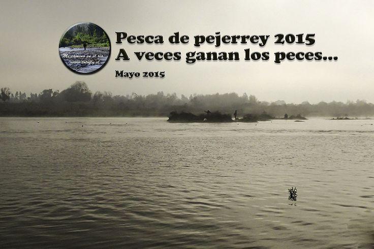 Pesca de pejerrey 2015 - A veces ganan los peces... :(