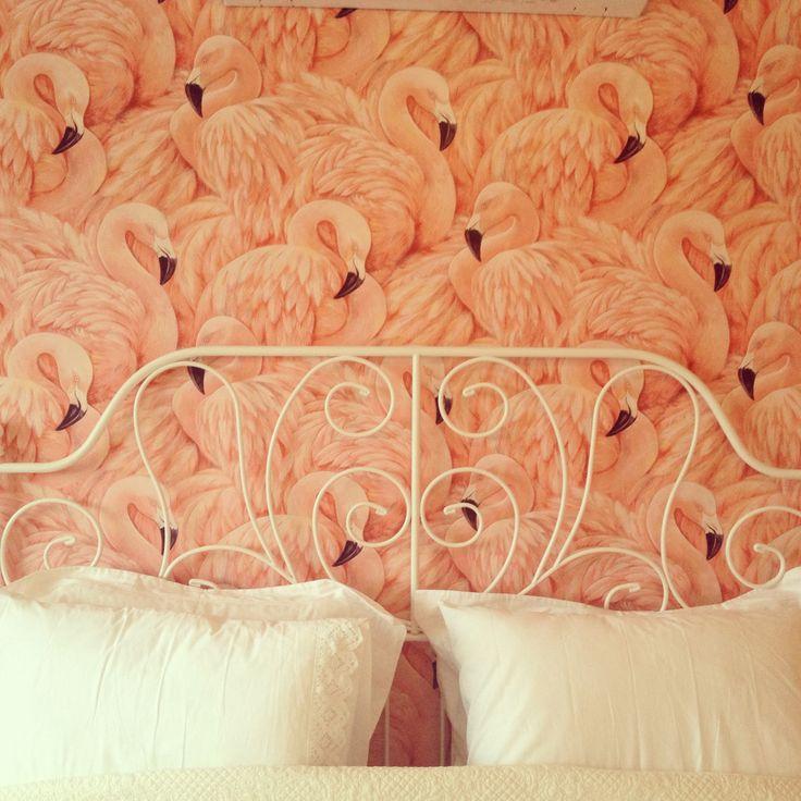 Flamingo wallpaper for guest room.