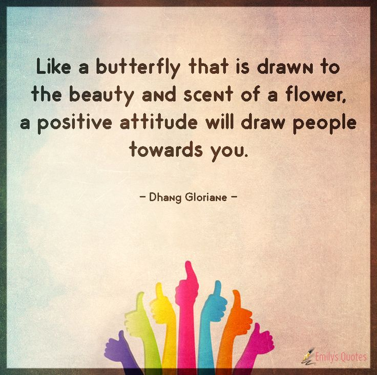 Like a butterfly that is drawn to the beauty and scent of a flower, a positive attitude