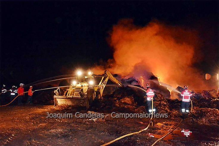 Campo Maior: Incêndio consumiu cerca de 1.500 fardos de palha | Portal Elvasnews