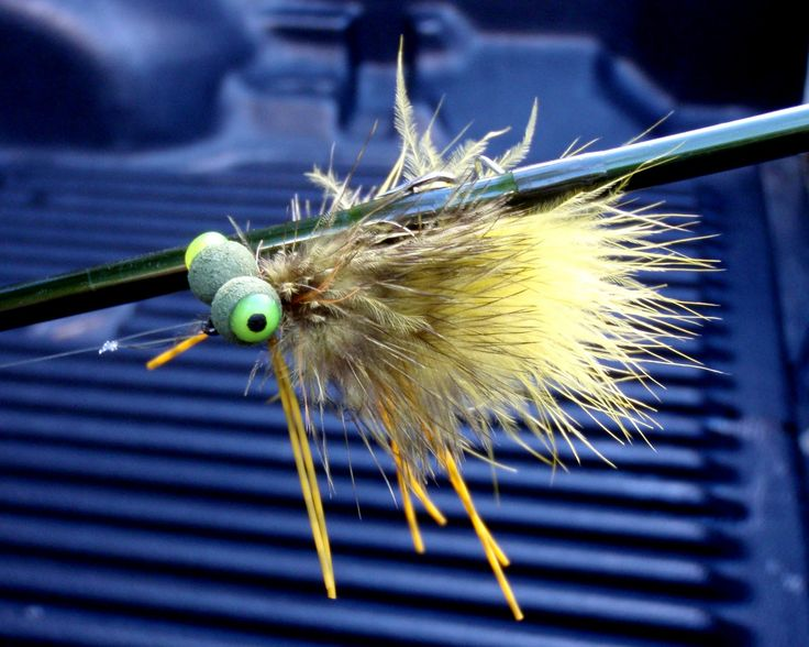 The Booby Frog (Top-Water Bass Fly) | Fly Fishing for Bass ...