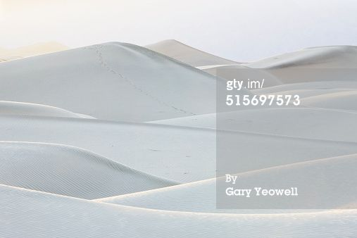 Stock Photo : Sand dune formations in the desert