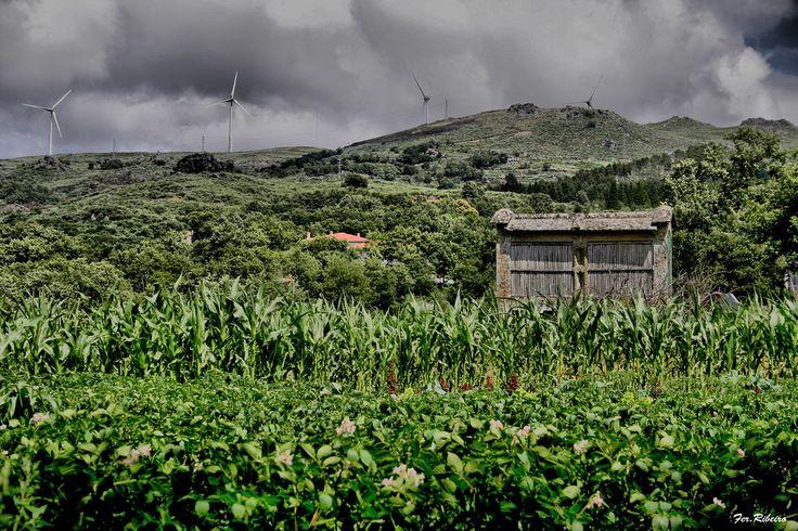Parada de Aguiar, também conhecida como Parada do Corgo, aldeia na freguesia de Soutelo de Aguiar, concelho de Vila Pouca de Aguiar, em Portugal.  Que contraste mostra esta fotografia: a antiga construção de pedras e palha e as hélices para produção de energia eólica.  Fotografia: Parada de Aguiar no Flickr.