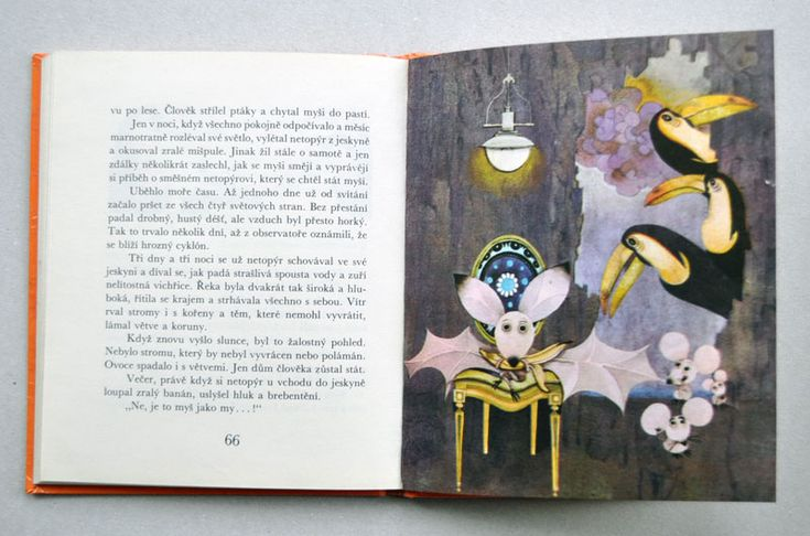 Cardoso - BÍLÝ KONÍČEK