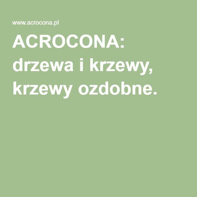 ACROCONA: drzewa i krzewy, krzewy ozdobne.