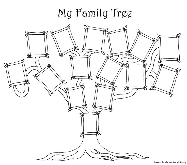 10 Best Family Tree Images On Pinterest