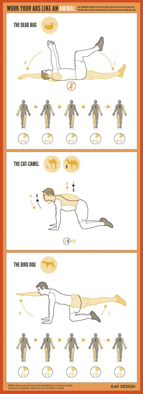 There are three core exercises that mimic animals and insects. The goal of this infographic was to communicate these exercises without words.