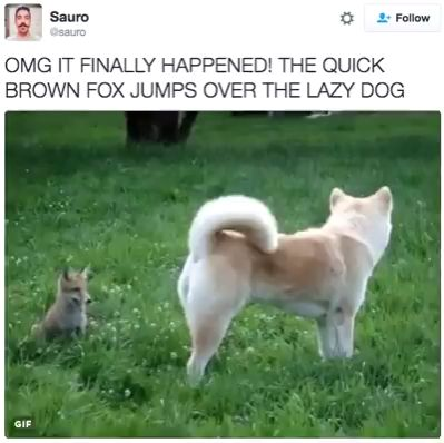 Omg it finally happened! the quick brown fox jumps over the lazy dog
