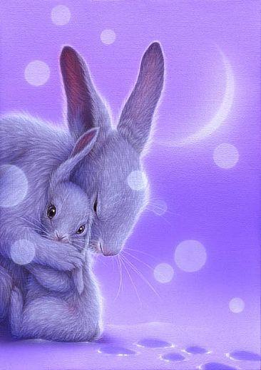 Don`t Worry4 - Rabbits by Kentaro Nishino