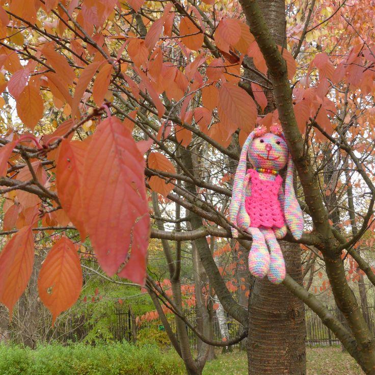 Осень в Японском саду!