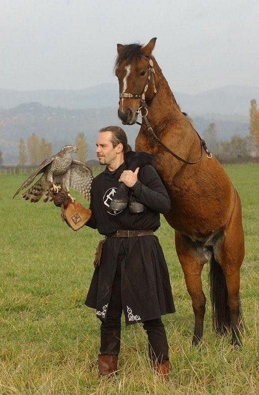 Hun horseman with horse and falcon, Hungary.