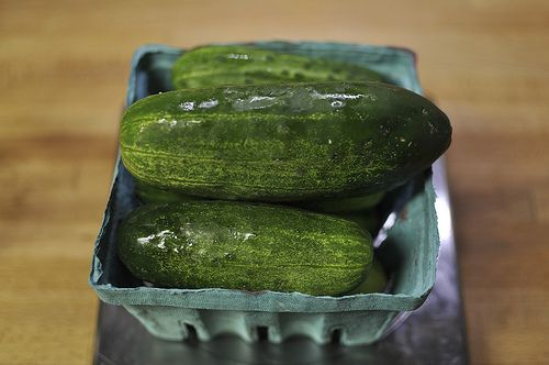 The perfect refrigerator pickles -- just put the ingredients together and refrigerate.