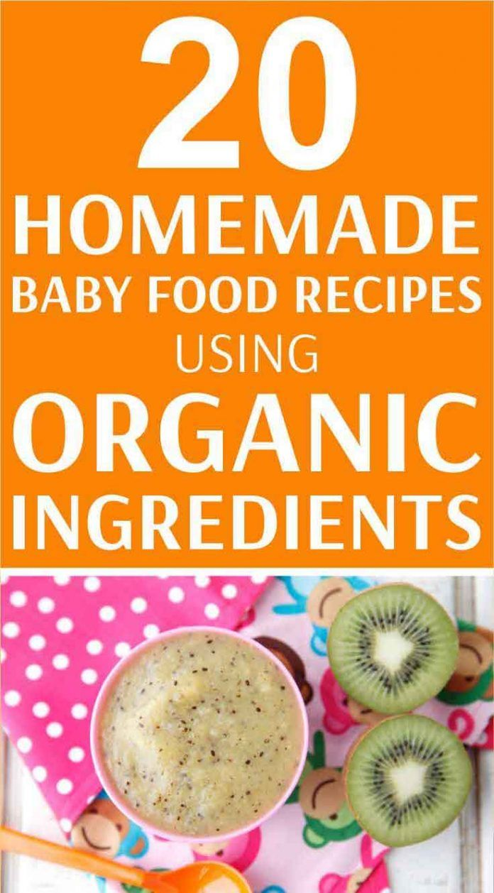 Organic Baby Food Recipes You Can Make at Home