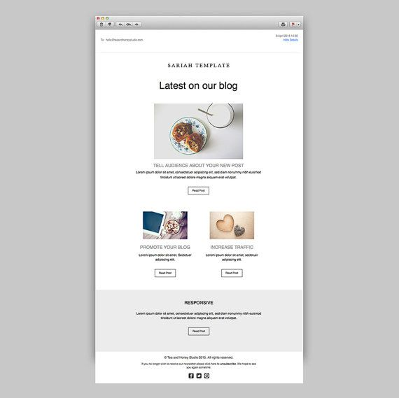 103 best email newsletters images on pinterest email newsletters promotional email newsletter responsive html by teaandhoneystudio spiritdancerdesigns Image collections