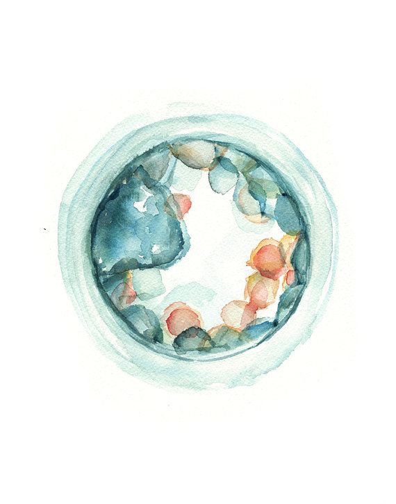 Embryo Watercolor Print Set of Three Fertility and by LyonRoad