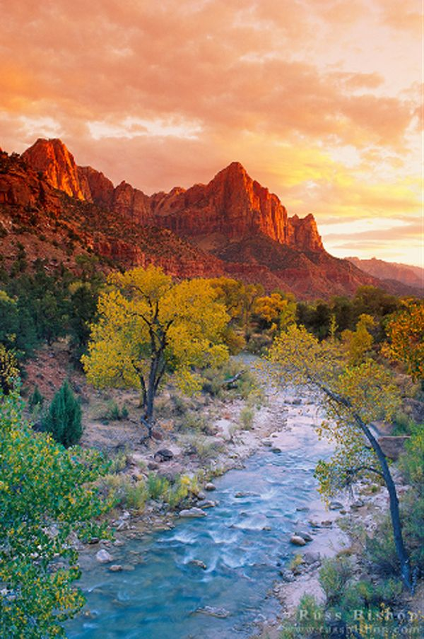 Zion National Park, Utah - A fun place to ride horses and be one with nature !!!!