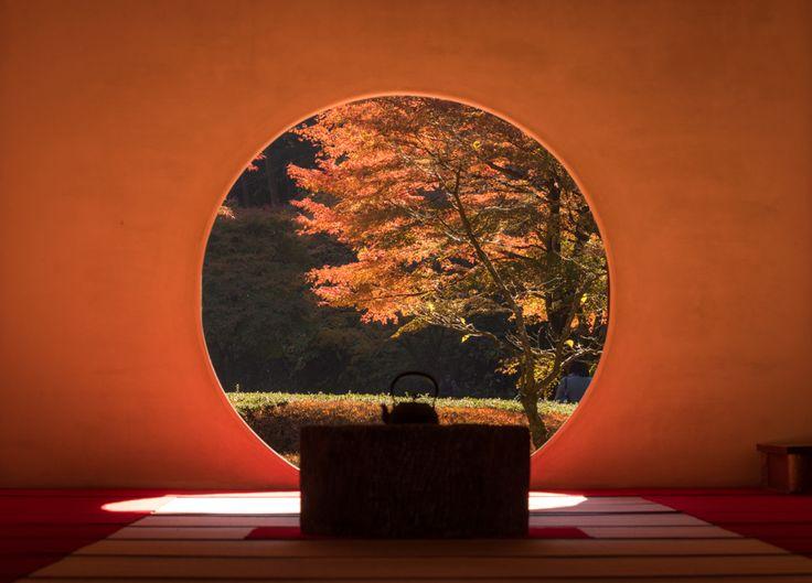 紅葉を見に鎌倉へ神社寺院カフェ温泉秋を感じる鎌倉日帰り旅行
