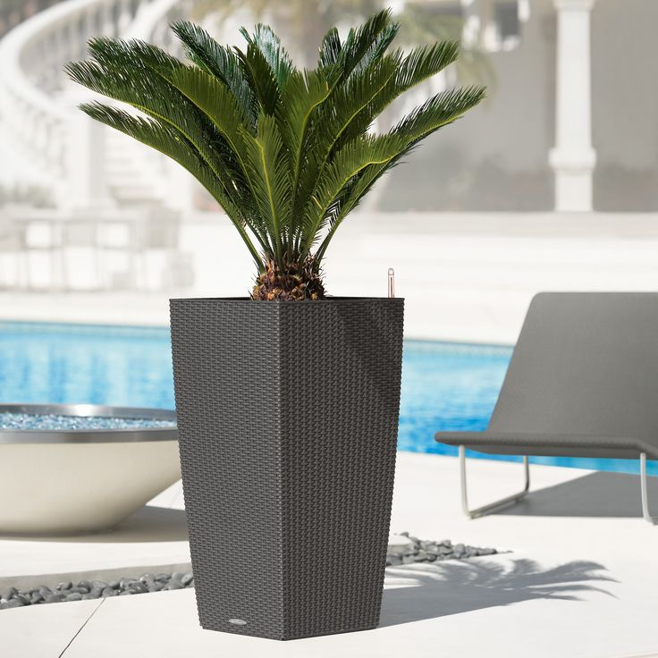 Have to have it. Square Lechuza Cubico Cottage Self-Watering Resin Planter - $84.99 @hayneedle