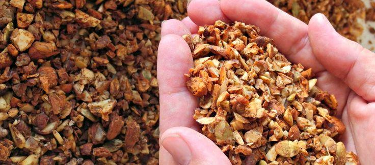 Gluten Free Breakfast Muesli Recipe   Tania Hubbard