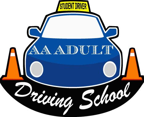aaadultdrivingschool.com there are too many components in this logo. three colours which don't work well together and three different type faces which makes it look messier. I like the shape of the car but think the cones distract from the copy.