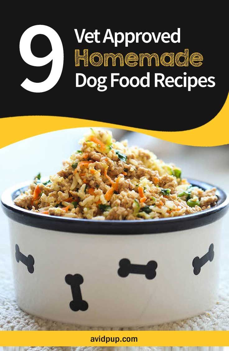 9 Vet Approved Homemade Dog Food Recipes For A Thriving Pup Approved Avid Dog Dogs Healthy Dog Food Homemade Raw Dog Food Recipes Healthy Dog Food Recipes