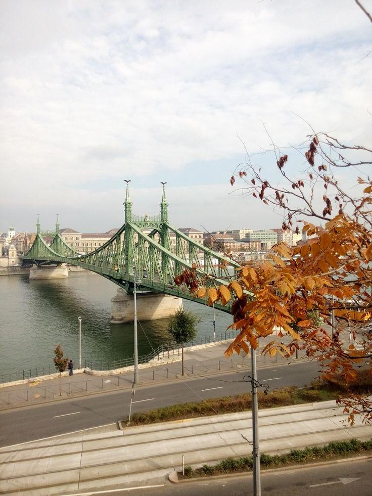 The Liberty Bridge.
