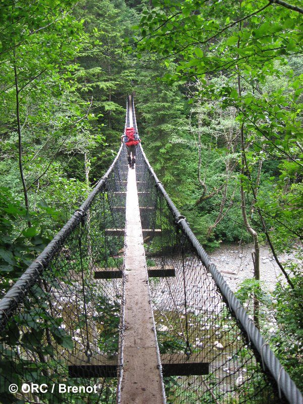 Pacific Coast Rim Trail | Pacific Rim National Park – Vancouver Island ~ 2009